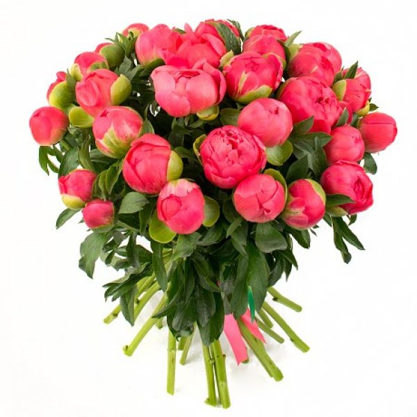 С днём рождения красивые цветы розы