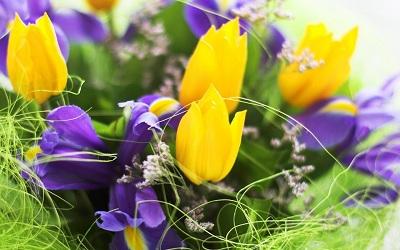 Дарите весеннее настроение вместе с «Флора Экспресс»