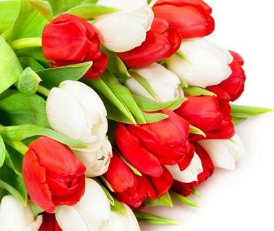 Живые цветы – лучший подарок на женский праздник