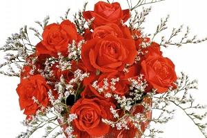 Красные цветы символизируют любовь, страсть, восхищение