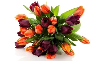 Трогательные букеты тюльпанов расскажут о вашем нежном чувстве
