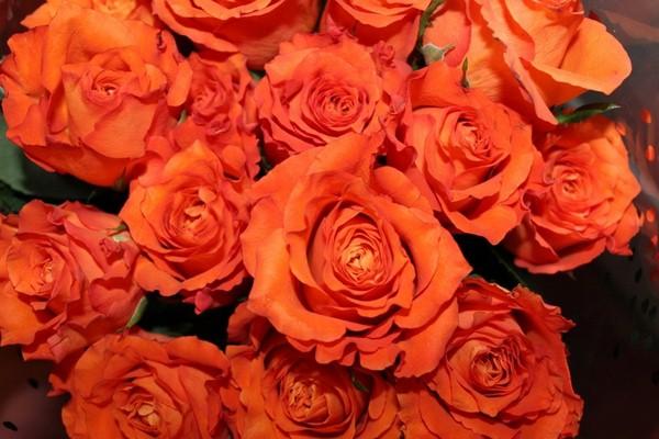Большой букет из оранжевых роз
