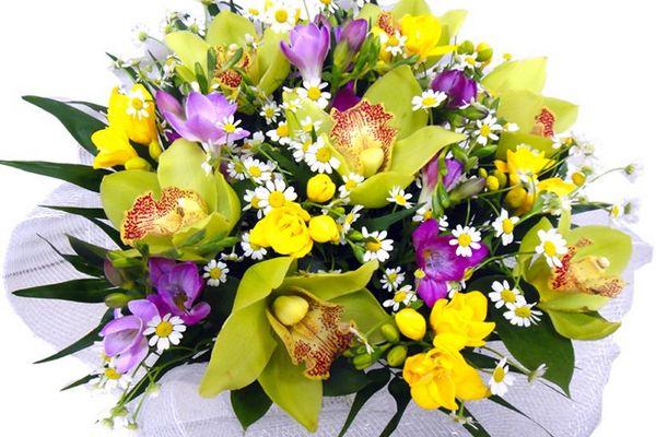 Букет из орхидей с фрезиями и ромашками