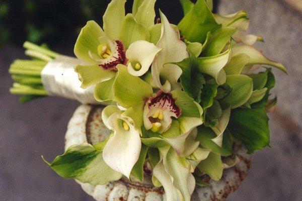 Букет из желто-зеленых орхидей, перевязанный лентой