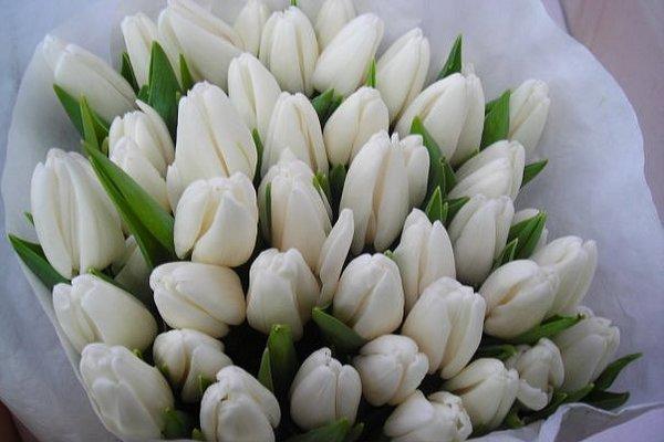 Букет из белых тюльпанов в оберточной бумаге