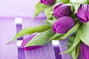 Букет тюльпанов уместен в разных ситуациях