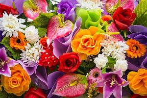 Среди широкого ассортимента найдутся цветы для любой ситуации