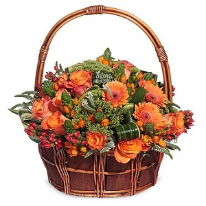 Доставка цветов в дубаи ейск живые цветы цены
