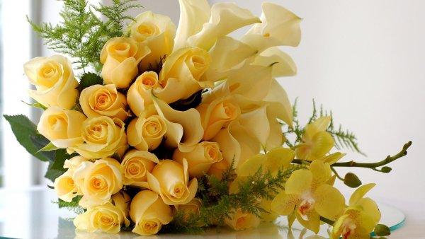 omsk-gde-kupit-tsveti-kalli-ukraine-tsvetochniy-magazin-tambov-flora
