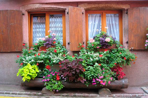 Картинки по запросу итальянские дворики фото